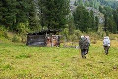 Backpackers в горах Altai, Россия Стоковое Изображение RF