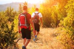 2 backpackers в горе лета Стоковые Фото