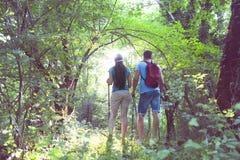 Backpackers в лесе Стоковая Фотография RF