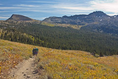 Backpackers on Carson Pass Royalty Free Stock Images