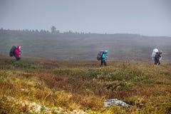 backpackers Estate nelle montagne di Altai, Russia Immagini Stock Libere da Diritti