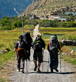 Backpackers Hiking. A group of backpackers Hiking in the scenic landscape of Around Annapurna Treck, Nepal stock photos