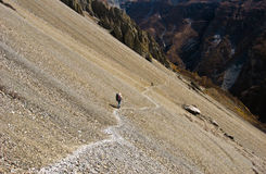 Backpackers Hiking. On the mountains of Around Annapurna trek, Nepal royalty free stock photos