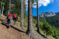Backpackers hiking Stock Photo