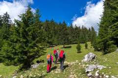 Backpackers hiking Royalty Free Stock Images