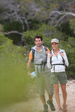 Backpackers on a hiking trip Royalty Free Stock Images