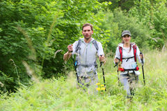 Backpackers on hiking trip. Backpackers on a hiking journey stock image