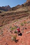 Backpackers pochodzi Tonto Wlec w Kopalnym jarze w Grand Canyon parku narodowym zdjęcie royalty free
