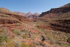 Backpackers pochodzi Tonto Wlec w Kopalnym jarze w Grand Canyon parku narodowym obraz royalty free