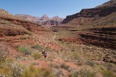 Backpackers pochodzi Tonto Wlec w Kopalnym jarze w Grand Canyon parku narodowym zdjęcia stock