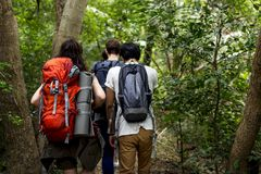 Backpackers trekking in a forest stock photography