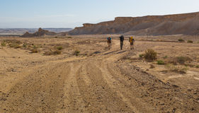 Backpackers walking desert road. Group of three backpackers travelers walking traveling desert country road next to cliffs. Negev desert, Israel royalty free stock photo