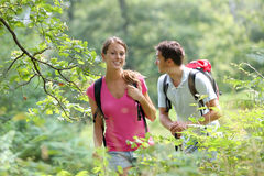 Backpackers walking in forest on sunny day Stock Photos