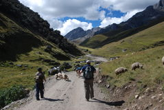 Backpackers walking in the mountains Stock Photos