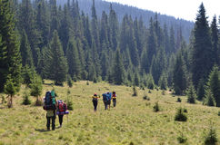 Backpackers walking in mountains. Backpackers team walking in mountains Royalty Free Stock Images