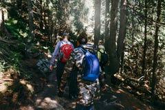 Backpacking denso di camminata di viaggio della foresta dello zaino dei turisti del gruppo Immagine Stock Libera da Diritti