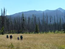 Backpacking in a meadow of central Idaho mountains stock photo