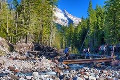 Backpacking in MT Hood National Forest Royalty-vrije Stock Afbeeldingen