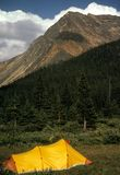 Backpacking tent in meadow Royalty Free Stock Photo