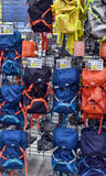 Backpacks in the sports shop Stock Image