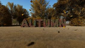 Backrgound del paisaje del otoño almacen de metraje de vídeo