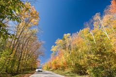 Backroad adventures. White car on an unpaved dirt road in a vibrant autumn forest royalty free stock photos