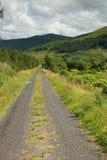 Backroad in landwirtschaftlichem Irland Lizenzfreies Stockbild