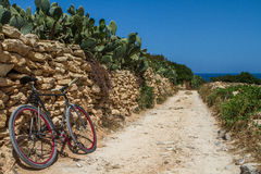 Backroad in Malta. Backroad to the ocean in Malta royalty free stock photography