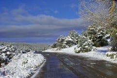 Backroad na Sandia zboczu góry Fotografia Royalty Free