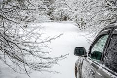 backroad winter arkivfoton