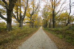 Backroads in autumn on Mohawk Trail in western Massachusetts, New England Stock Photos