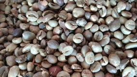 Backround кофейного зерна Стоковая Фотография RF