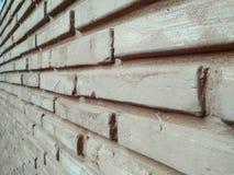 backround av naturen för vägghussten Arkivbild