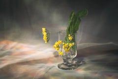 backround błękitny kwiatów ilustracyjny linden wektor Obrazy Royalty Free