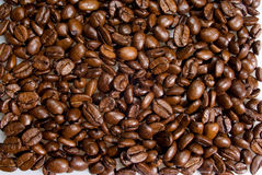 Backround of coffee grains Royalty Free Stock Photography