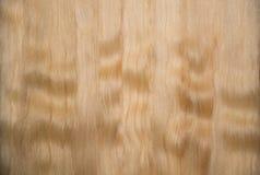 Backround de cheveu blond Image libre de droits