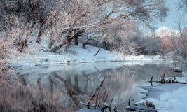 Backround de la escena del invierno Imágenes de archivo libres de regalías