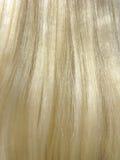 Backround do cabelo louro Imagens de Stock Royalty Free