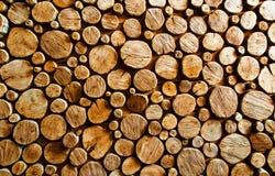Backround en bois de logarithme naturel photo libre de droits