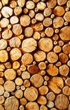 Backround en bois de logarithme naturel Images stock