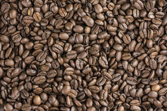 Backround för kaffebönor Arkivbild