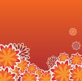 Backround floreale arancione Fotografia Stock Libera da Diritti