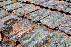 Backround from old terracota roof tiles Stock Photography