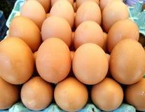 Backround van veel eieren stock afbeelding