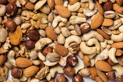 Backround von den verschiedenen Arten der nuts Mandel, Walnuss, Haselnuss, Acajoubaum, Paranüsse Lizenzfreie Stockfotografie