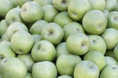 A backround of lots of green apples stock photos