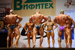 Backs of bodybuilders at Open Cup of bodybuilding Stock Photos