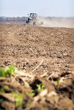 Backside cultivator raises great dust on ploughed soil Royalty Free Stock Photography
