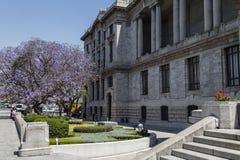 Backside of Palacio de Bellas Artes, Avenida Juárez, Centro Histórico, Mexico City. The Palacio de Bellas Artes is one of the most important cultural stock image