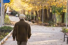 Backside of a senior man walking in a park in tehran on sunny a. Utumn evening. Autumn colors stock image